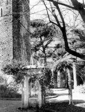 Klingsor's garden is found! Gardens of the Villa Ruffolo at Ravello. Inspiration for the 1882 staging of Act II.